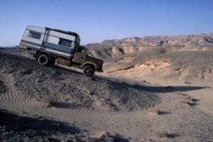Sauri in Ägypten